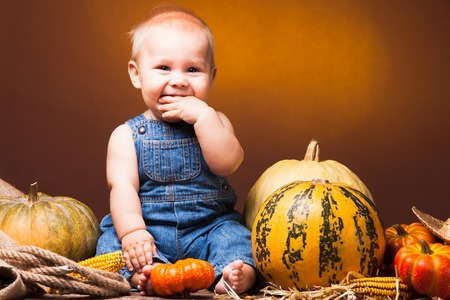Cute baby posing on the background of pumpkins thanksgiving stock cute baby posing on the background of pumpkins thanksgiving greetings stock photo 56551720 m4hsunfo