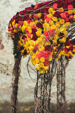 Luxury red and yellow roses for wedding metal arch decoration Stock Photo