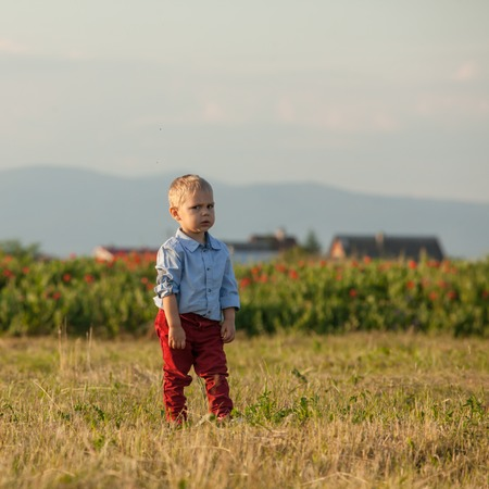 red pants: Portrait of a little cute boy in red pants on a rural background Stock Photo