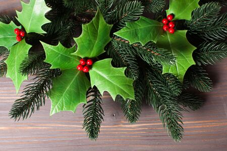 Cristmas: Cristmas Holly berry and fir twigs on the gray
