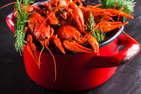 Group of red boiled crayfish with herbs on slate dark background