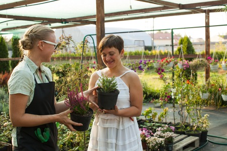 conservatory: Female florist showing flowers to the customer at the flower store