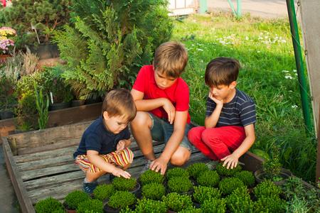 Dzieci z zielonymi sadzonkami Zdjęcie Seryjne