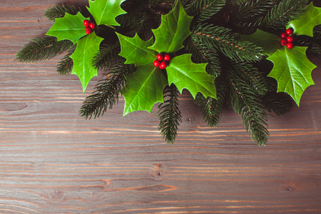 Holly and fir twigs on wood wall Stock Photo