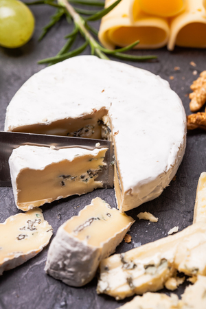 Cheese delicious plate Stock Photo
