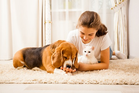 the girl is relaxing with her pets Standard-Bild