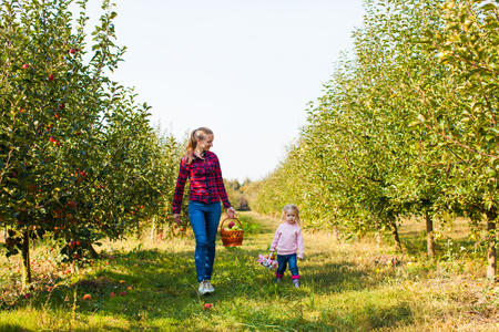 Mother with girl pick apples in the basket