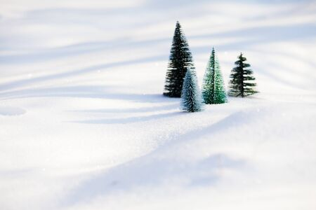For small artificial christmas trees standing aside near each other on fresh and soft snow. Sunny frosty morning view of small fir trees on snow, saving nature concept