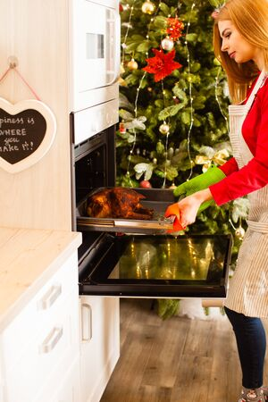 Housewife prepares roast chicken in the oven Banco de Imagens