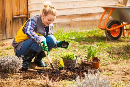 Frau pflanzt oder arbeitet am Blumenbeet