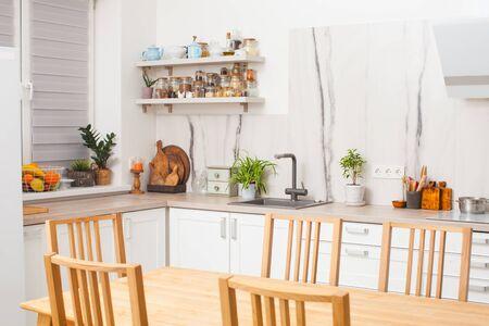 Moderne skandinavische Designküche mit Pflanzen