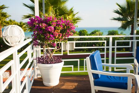 Terrace with sea view, vivid summer day
