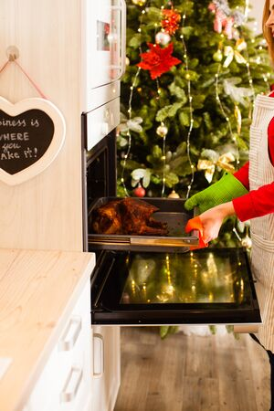 Woman cooking stuffed duck in the kitchen for Christmas party.
