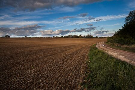 Agriculture plowed field and blue sky with clouds in sunset. Farmland prepared for planting crops in spring.