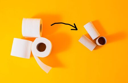 Toilet paper deficit during quarantine - excess consumption over income