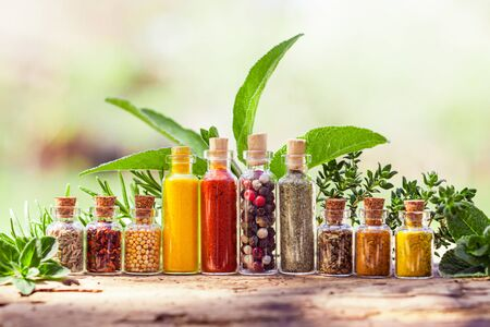 Tiny glass containers with various colorful spices and peppers placed on old wooden crannied board. Different fersh spicy herbs behind bottles with spices. Delicious home cooking