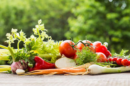 Fresh homegrown vegetables on table outdoors on summer day Standard-Bild
