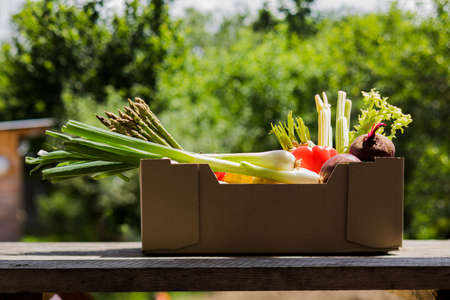 Grocery box with fresh vegetables on wooden table, outdoors.