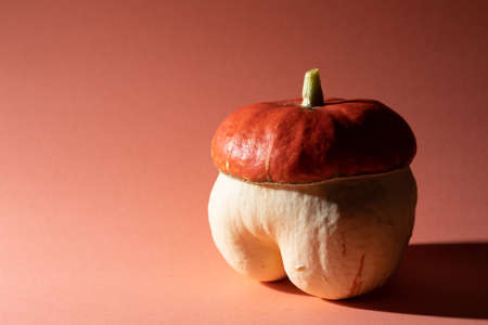 Decorative and unconventional pumpkin, isolated on pink