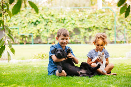 Close relationship between siblings and their pets