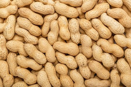 Peanuts in the shell. Texture for designers. Food. Background of peanuts.