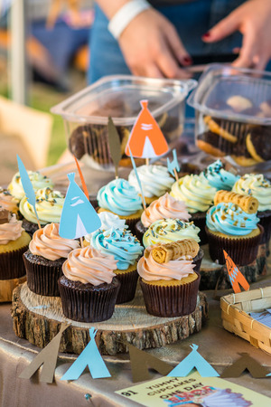 stumps: Delicious cupcakes with colored cream on wooden stumps
