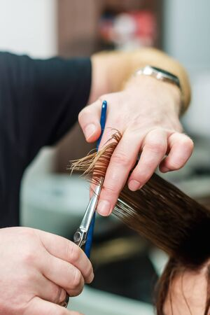 Professional hairdresser hold in hand between fingers lock of red hair and cuts hair tips, scissors closeup. Getting rid of those split ends