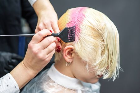 Hands of hairdresser dyes your hair pink, close up pink coloring. 스톡 콘텐츠