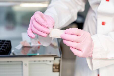 Nurse shows sticky plaster in her hands. Foto de archivo