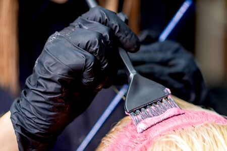 Closeup of hands of hairdresser dyeing hair of woman in pink color. Dyeing hair of woman.