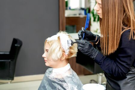 Hairdresser is dyeing hair of woman in white color at hairdress studio. Banque d'images