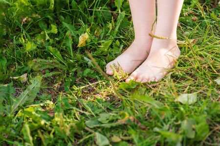 Lower body part of bare feet of child standing on green grass of lawn. Barefoot on grass.