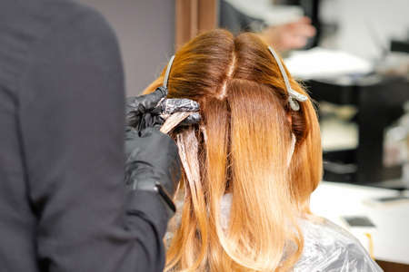 Back view of professional hairdresser dyes hair of young woman in beauty salon