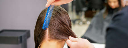 Back view of hairdresser hands parting long hair of young woman in hair salon