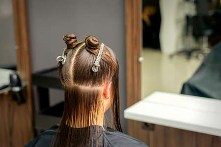 Divided women's hair into sections with clips in the barbershop