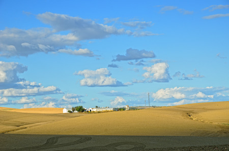 agricultural area: Andalusia is traditionally an agricultural area  The primary cultivation is arid farming of cereals  Stock Photo