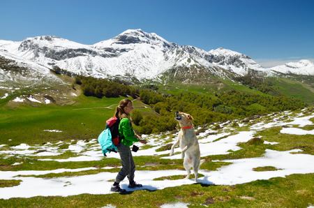 preteen  pure: A preteen girl is playing with a big dog on the spring slope in Pyrenees  There are mountains covered with snow in the background  Stock Photo
