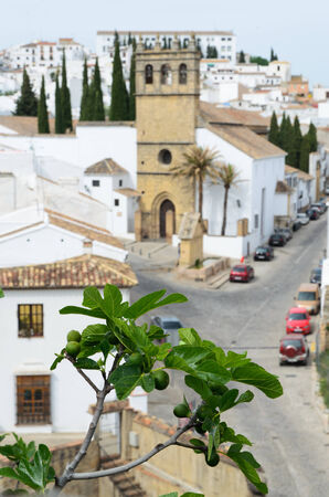 Ronda is the most well-known of  white towns  on the south coast of Spain  photo