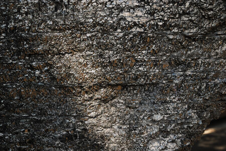 bituminous coal: Lump of coal is photographed close by  There is large light spot on shiny surface of black mineral   Stock Photo