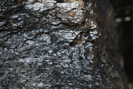 bituminous coal: Lump of coal is photographed from arris  In the foreground there is shiny surface with many splits and cracks  Side face is blurred   Stock Photo