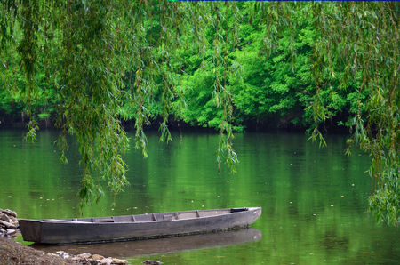 пышной листвой: Дерево судно совершает посадку недалеко от берега пруда пышной листвой, отражаются в спокойной водной поверхности