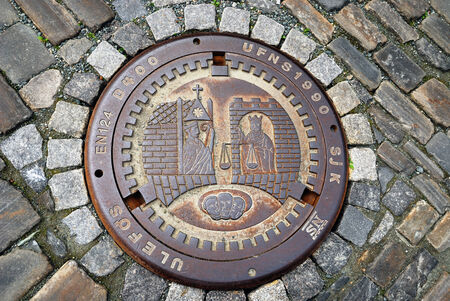 coining: A metal sewer hatch is on the stone block pavement  It is decorated with coining picture of ancient life