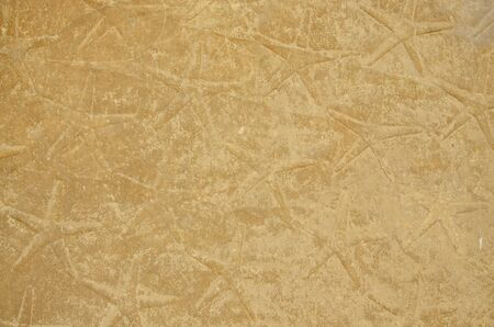 extant: The stone surface of the ancient roof is embellished with stars. These symbols are typical for ceiling decoration in Egyptian Old Kingdom.