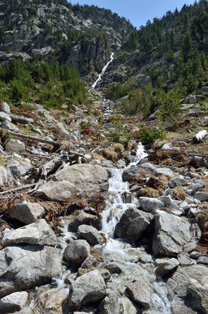 forested: El Riuet dEstany Negre is a small river on the forested slope between the mountain lake Estany Negre and Estany de Cavallers in the Boi valley, Catalonia, Spain.