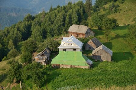 garden settlement: A farm is located on the green grassy hill. In the background there are mountain slopes covered with a coniferous forest.