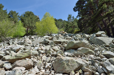 tourism in andorra: A large stony scree on the mountain slope in the national park Vall-de-Madriu-Perafita-Claror