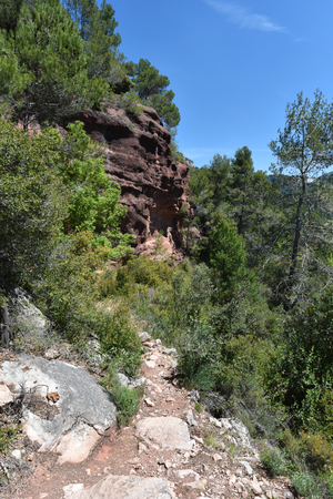 The rocky pass is along the abrupt cliff in the Prades mountains covered with lush foliage.