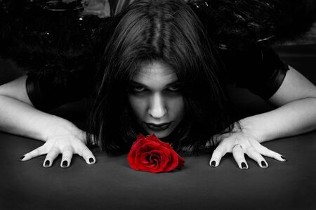 The girl in black clothes is similar to the vampire and a red rose. Its love and passion are dangerous. Stock Photo - 6609774