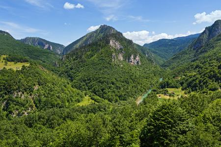 Beautiful canyon of the Tara river in Montenegro Stock Photo