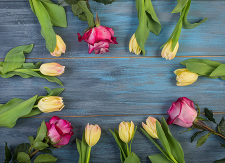 Circle of flowers on blue wooden background Stock Photo